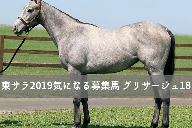 東2019 グリサージュ18 募集馬