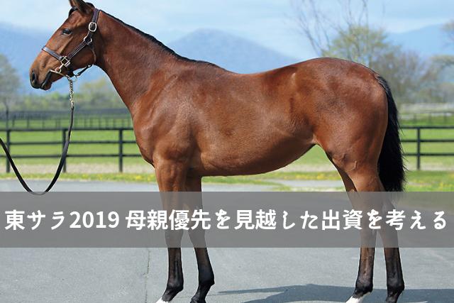 東サラ2018 ルーヴインペリアル18 募集馬