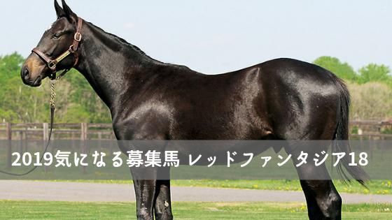 東サラ 募集馬 レッドファンタジア18
